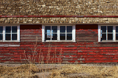 Photograph - Hen House Windows by Nikolyn McDonald