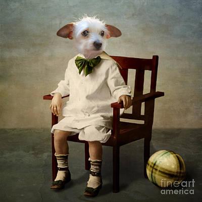 Dog Rescue Photograph - Henri by Martine Roch