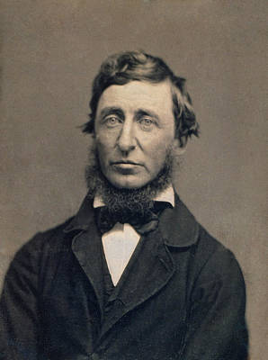 Henry David Thoreau Painting - Henry David Thoreau by Celestial Images