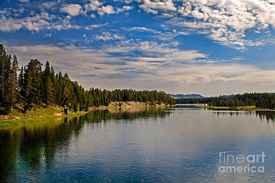 Henry Fork Of Snake River II Print by Robert Bales