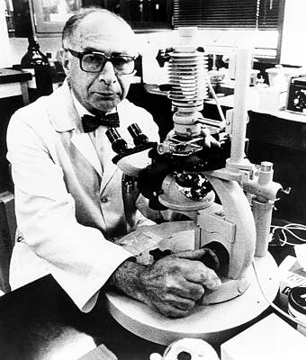 Electronic Photograph - Henry Kaplan by National Cancer Institute