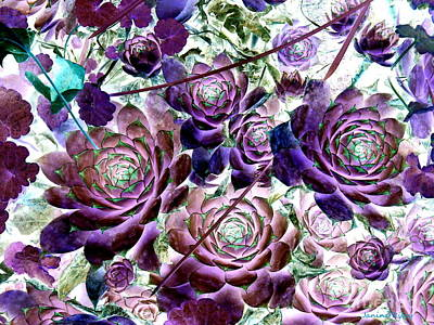 Hens And Chicks - Botanical - Indigo Blue And Purple Print by Janine Riley