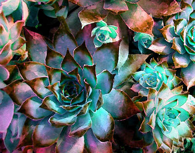 Cards Digital Art - Hens And Chicks Series - Verdigris by Moon Stumpp