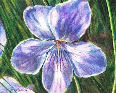 Shana Jackson Painting - Her Name Was Violet by Shana Rowe Jackson