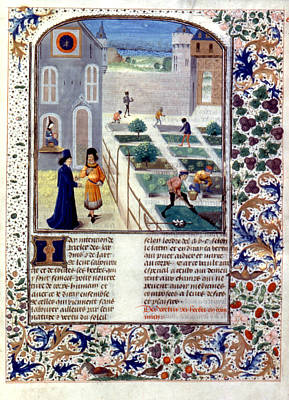 Sowing Painting - Herb Planting, C1470 by Granger