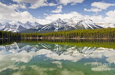 Photograph - Herbert Lake by Dee Cresswell