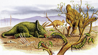 Trio Photograph - Herbivorous Dinosaurs by Deagostini/uig