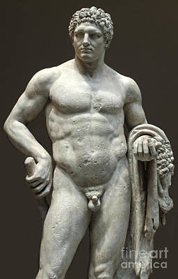 Photograph - Hercules by Gregory Dyer