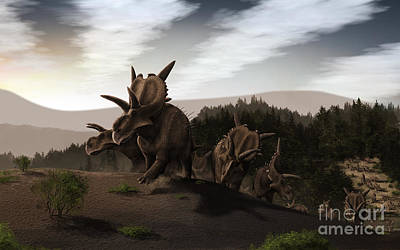 Animals Digital Art - Herd Of Xenoceratops Foremostensis by Christian Masnaghetti
