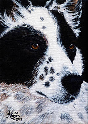 Herding Dog Art Print