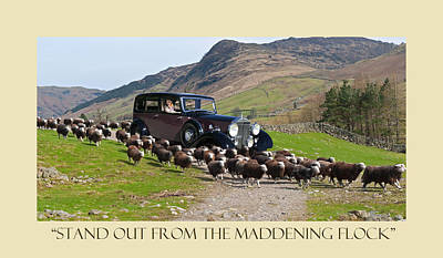Photograph - Herding The Flock With A Rolls by Jack Pumphrey