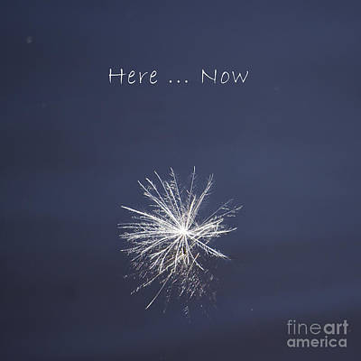 Photograph - Here ... Now by Aimelle