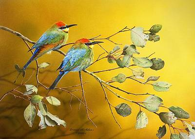 Painting - Here Comes The Sun - Rainbow Bee-eaters by Frances McMahon