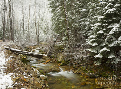 Here Comes Winter Art Print by Idaho Scenic Images Linda Lantzy