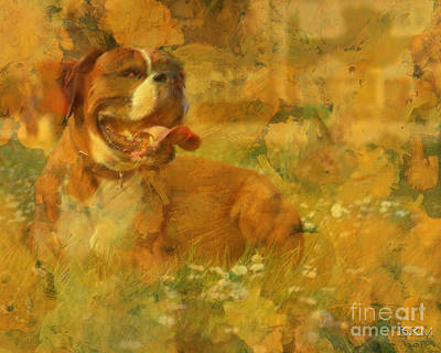 Here Doggie Art Print