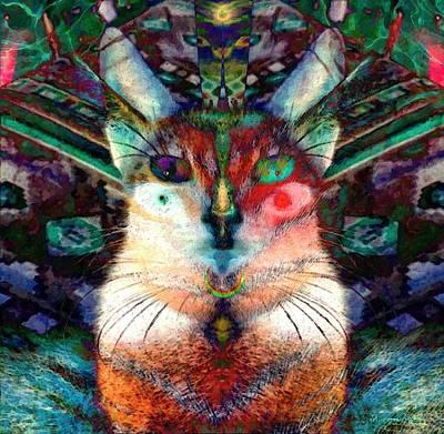 Here Kitty Kitty Art Print by D Preble