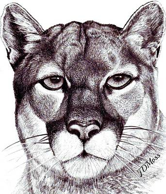 Here Kitty Kitty Art Print by Janet Moss