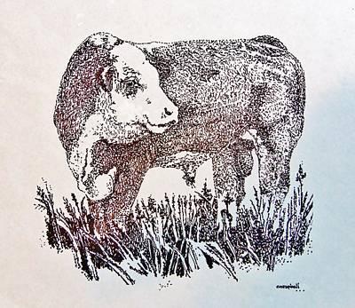 Polled Hereford Bull  Art Print