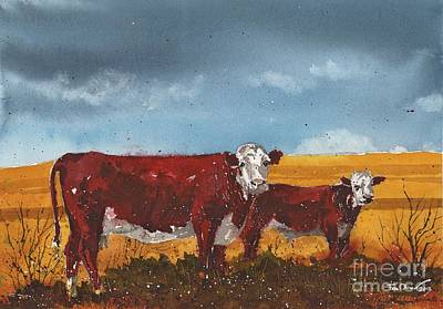 Hereford Cow And Calf Art Print by Tim Oliver