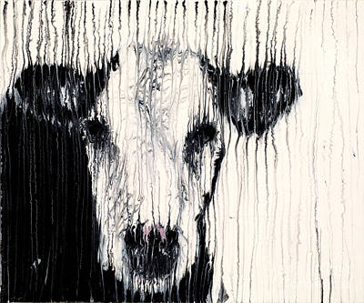 Calf Mixed Media - Hereford by Scott Lindner