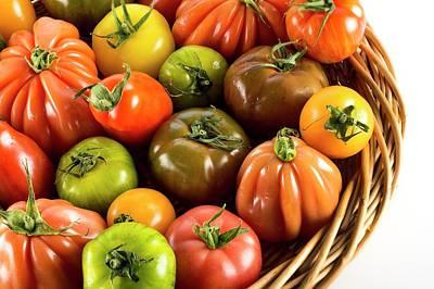 Heritage Tomatoes Art Print