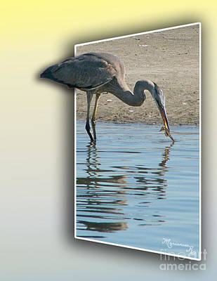 Photograph - Heron And Sea-horse by Mariarosa Rockefeller