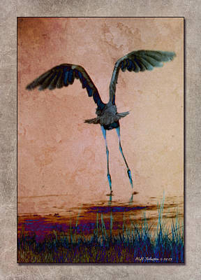 Photograph - Heron Ballet by WB Johnston