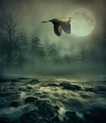 Heron By Moonlight Art Print