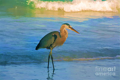 Photograph - Heron Hunting by Joan McArthur