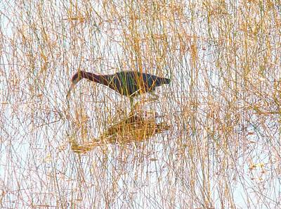 Photograph - Heron In The Abstract by Van Ness