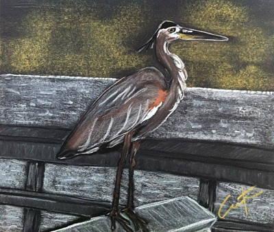 Heron On Hunting Island Fishing Dock Art Print