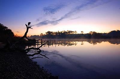 Digital Art - Heron Sunrise On The Bon Secour by Michael Thomas