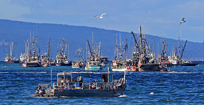 Photograph - Herring Fishery 2013 by Randy Hall
