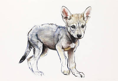 Wolf Pup Painting - Hesitating Arabian Wolf Pup by Mark Adlington