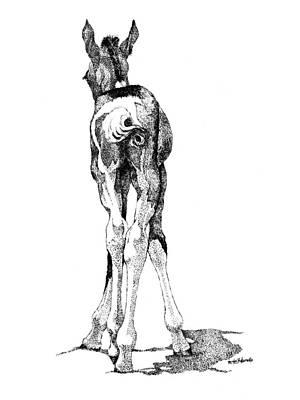 Horse Drawing - Hesitation by Renee Forth-Fukumoto