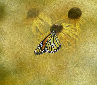 Hey Susan There Is That Butterfly Again Art Print by Diane Schuster