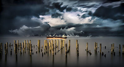 Peter Iredale Photograph - Hey You Guys by Alexis Coram