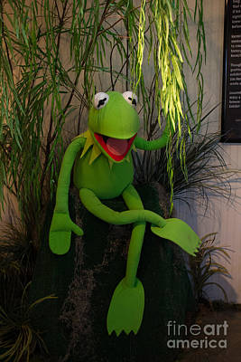 Photograph - Hi Ho  Kermit The Frog Here  by Jim McCain