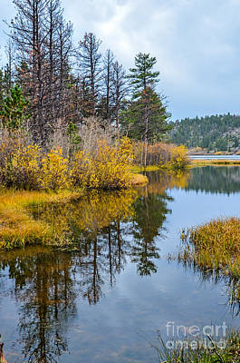Fort Collins Photograph - Hiawatha Lake 3 by Baywest Imaging