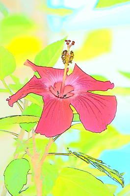 Photograph - Hibiscus Dream by Cathy Shiflett