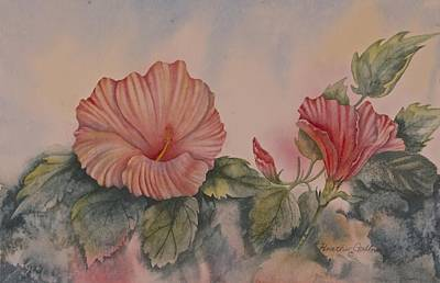 Hibiscus Original by Heather Gallup