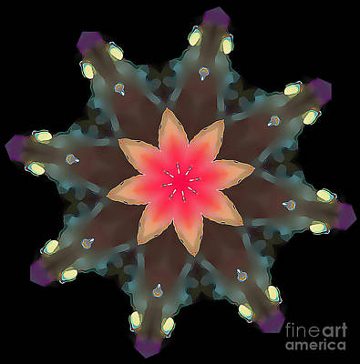 Hibiscus Mandala Art Print by Wernher Krutein
