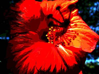 Photograph - Hibiscus by Mark Malitz