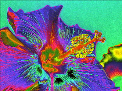 Digital Art - Hibiscus Power by Rebecca Flaig