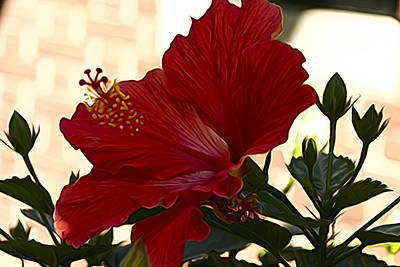 Photograph - Hibiscus Red by Alice Gipson