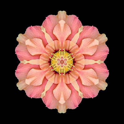 Hibiscus Rosa-sinensis I Flower Mandala Art Print by David J Bookbinder