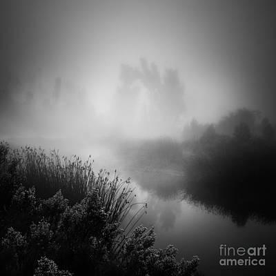 Photograph - Hidden by Alexander Kunz