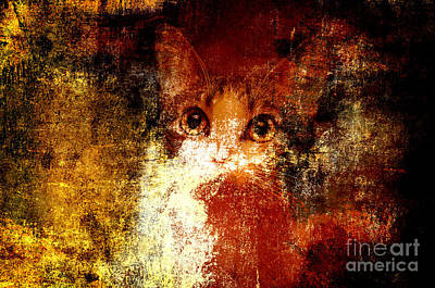 Andee Design Puss Photograph - Hidden by Andee Design