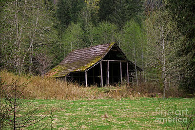Photograph - Hidden Barn by Deanna Proffitt