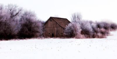 Tree Photograph - Hidden Barn by Julie Hamilton